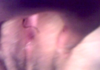 my exwifes ass